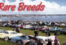 RARE BREEDS – STUDEBAKER CAR CLUB SHOW, GEELONG VIC